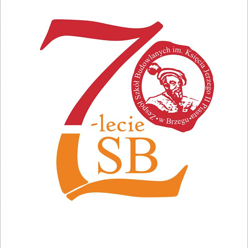 Termomodernizacja budynków użyteczności publicznej Powiatu Brzeskiego - ZSB B